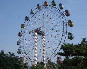 giant 40m ferris wheel suppliers