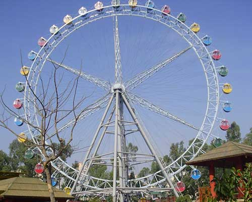 52 ferris wheel for sale