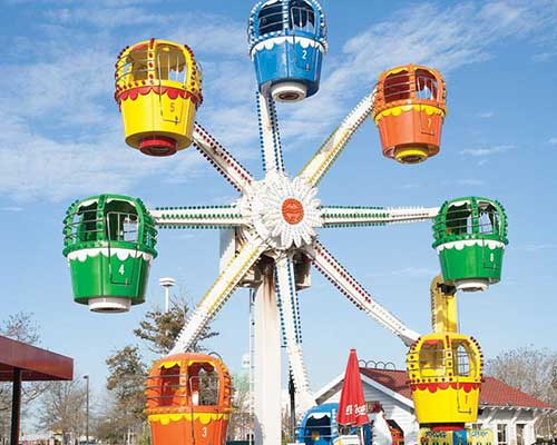 low price small ferris wheel