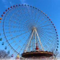 customized observation wheel