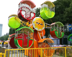 double face ferris wheel for sale
